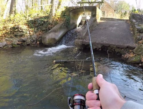 TROUT FISHING at 200 Year Old Mill